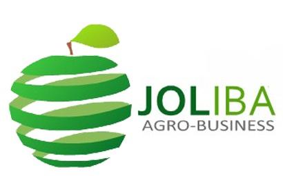 Joliba1 logo