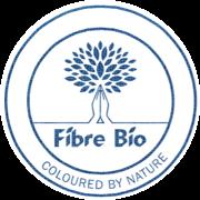 Final logo bleu